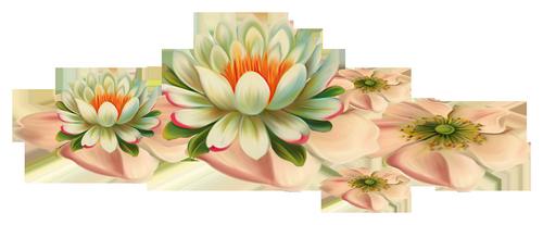 fleurs_paques_tiram_255