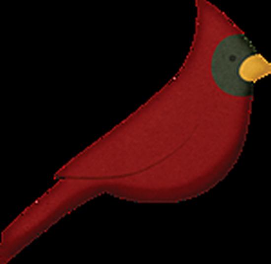tubes_oiseaux_tiram_74