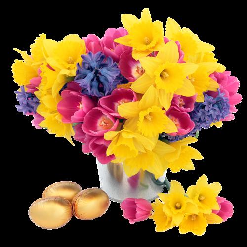 fleurs_paques_tiram_282