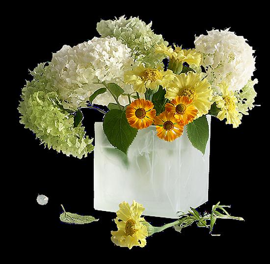 tubes_fleurs_tiram_284
