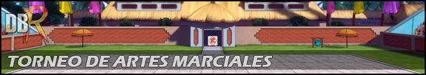 Mecánica del Torneo de Artes Marciales 007_TDAM