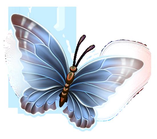 tubes_papillon_tiram_353