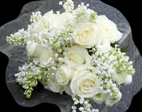 tubes_fleurs_tiram_449