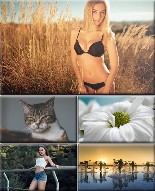 LIFEstyle News MiXture Images. Wallpapers Part (1373)