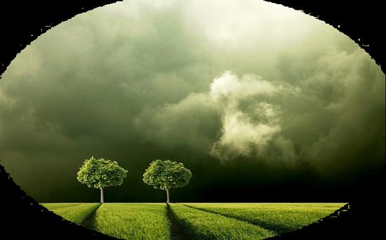 paysage_tiram_809