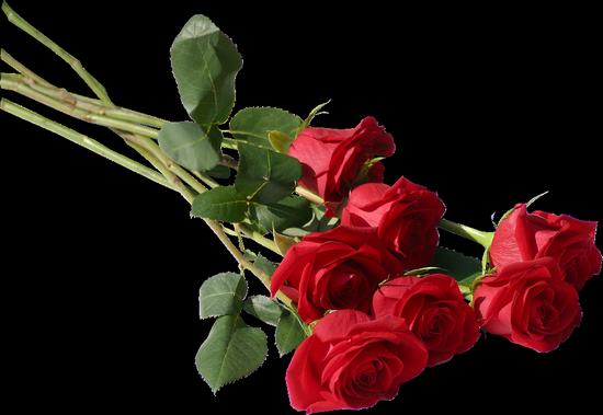 tubes_fleurs_tiram_494