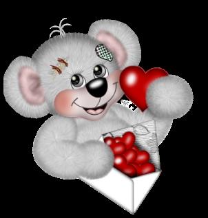 teddy_saint_valentin_tiram_212