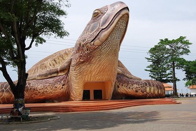 Океан-парк в гигантской черепахе