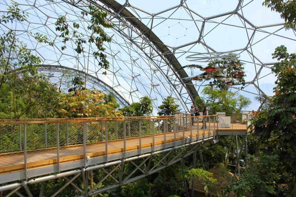 Внутри купола ботанического сада «Эдем»