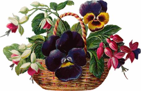 tubes_fleurs_tiram_926