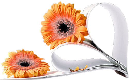 tubes_fleurs_saint_valentin_tiram_171