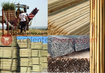 Olive tree stakes: Wood, synthetic stakes photos iron, fiber, steel, bamboo cane, pine, acacia...