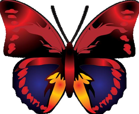 tubes_papillon_tiram_622