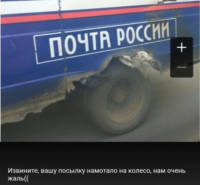 1539117925_drunkcow_net_foto_prikoly_7
