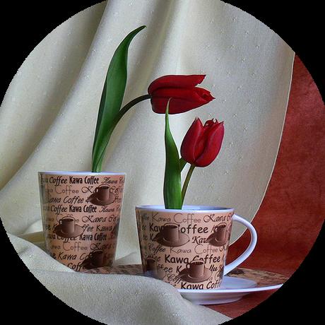 tubes_fleurs_tiram_856