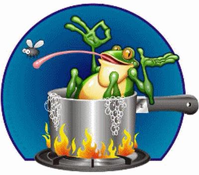grenouille_tiram_110
