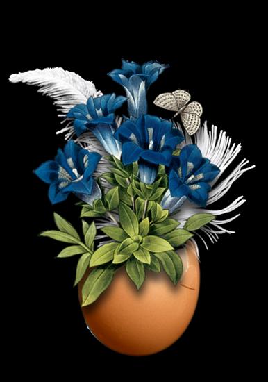 fleurs_paques_tiram_284