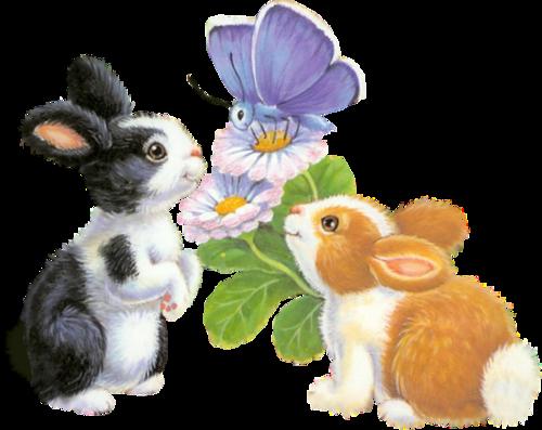 lapins_paques_tiram_50