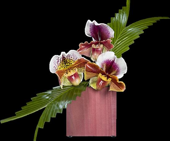 tubes_fleurs_tiram_416