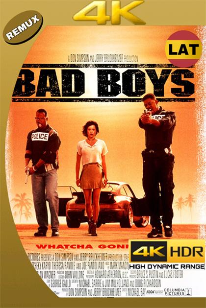 DOS POLICÍAS REBELDES 1995 LAT – ENG ULTRA HD 4K BDREMUX 2160P 74GB.mkv
