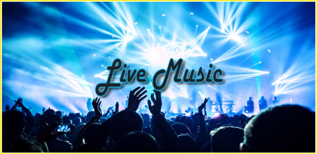 Music Festival Entertainment