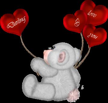 teddy_saint_valentin_tiram_226