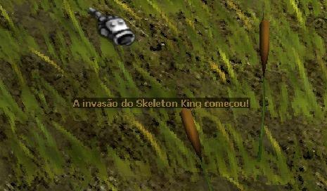 [Imagem: Skeleton_King1.jpg]