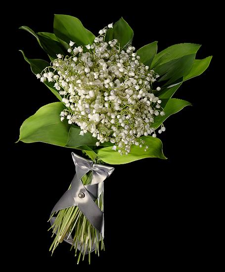 tubes_fleurs_tiram_225