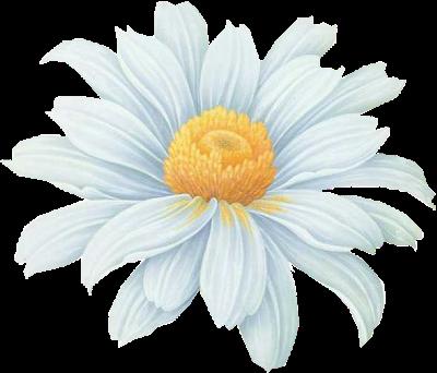 tubes_fleurs_tiram_712