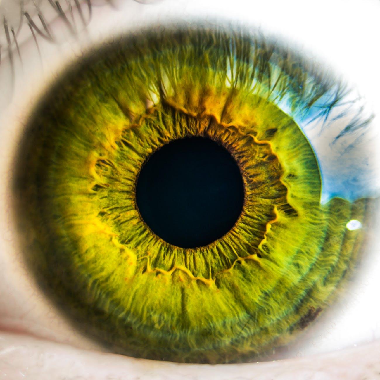 ضعف البصر تقوية البصر