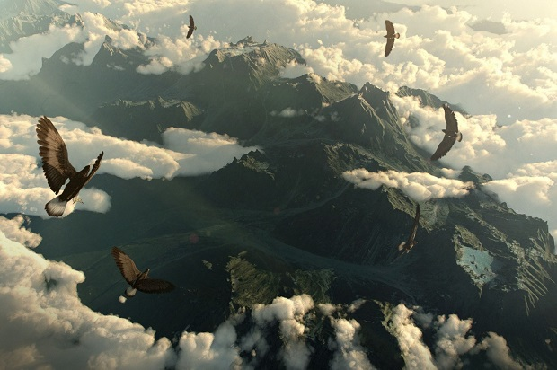 mountains_clouds_birds_eagles
