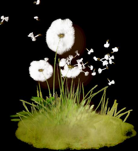 tubes_fleurs_tiram_554
