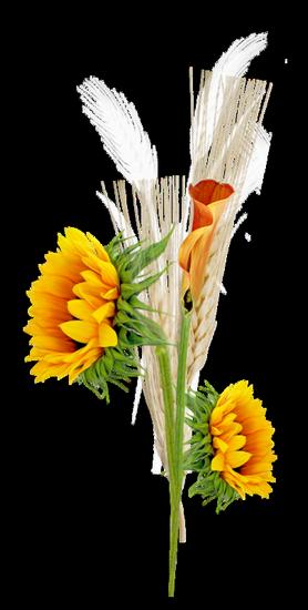 tubes_fleurs_tiram_119