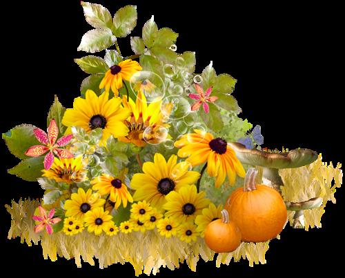 tubes_fleurs_tiram_604