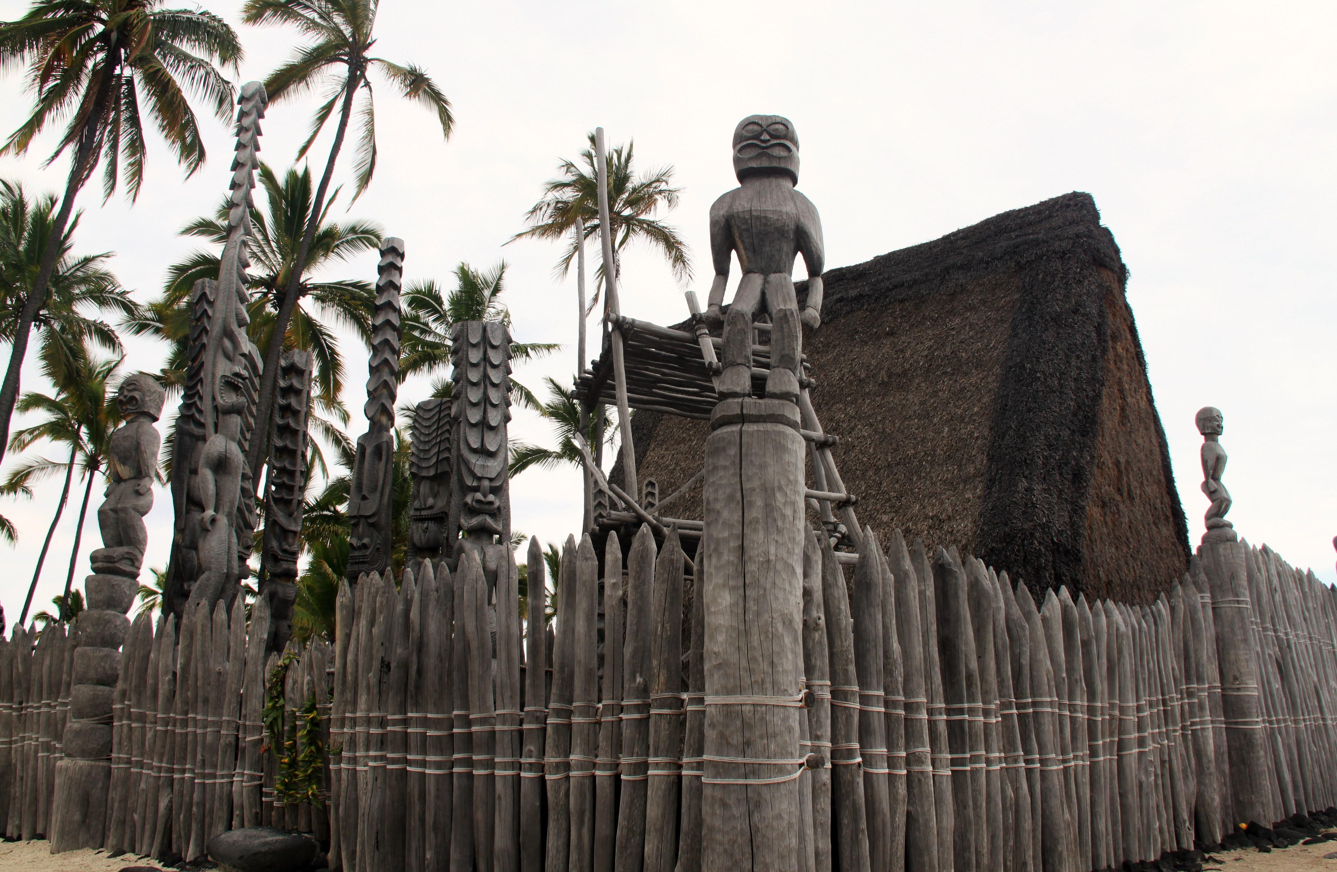 Kona Tours
