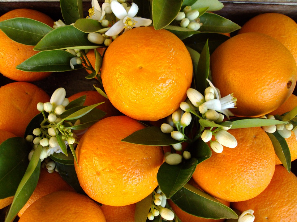 Neroli Oil Market in 360researchreports.com