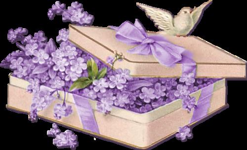 tubes_fleurs_tiram_587