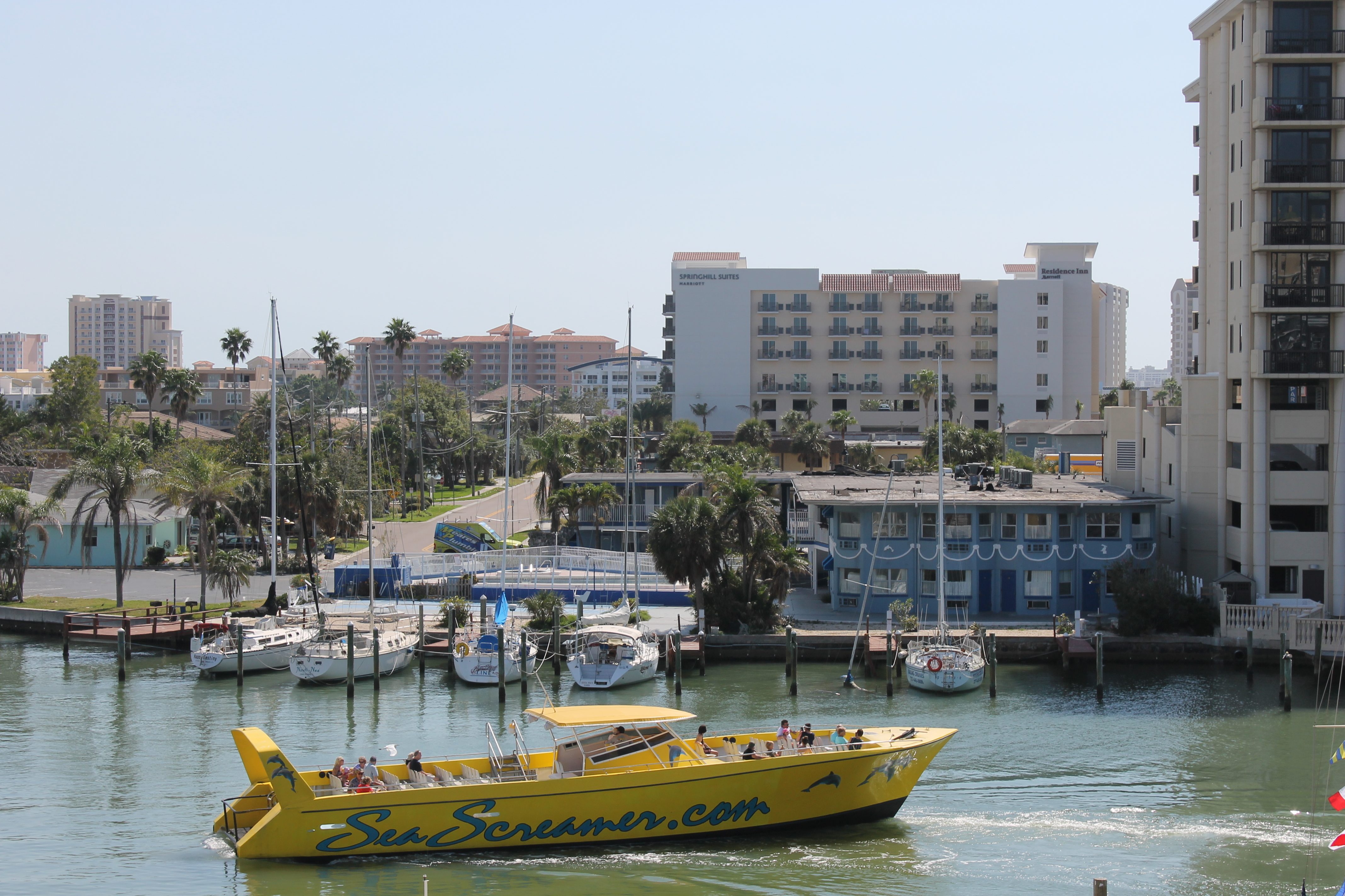 Sea Screamer Clearwater