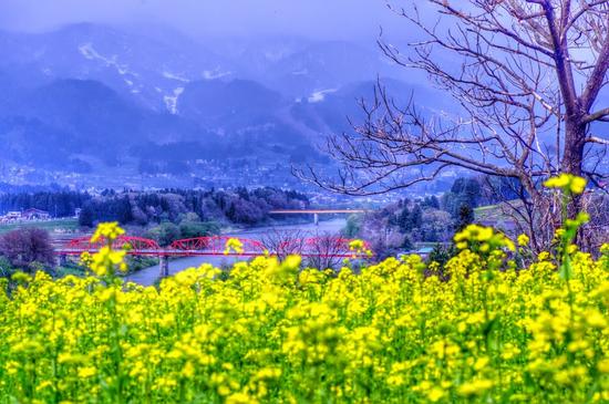 paysage_tiram_125