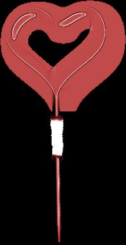 coeur_saint_valentin_tiram_276
