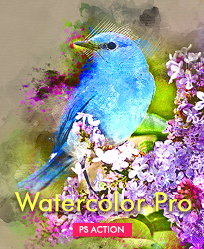 Watercolor portfolio  - Watercolor Pro - Tech Sketch Photoshop Action