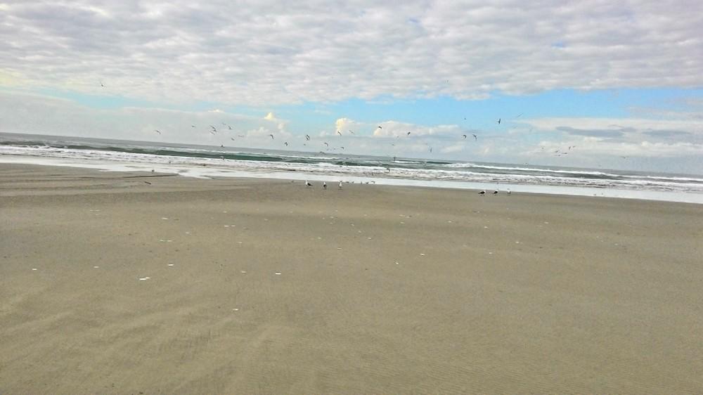 [Imagem: praia01.jpg]
