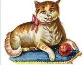 Gatos Vintage - Página 2 Sin-t-tulo-980
