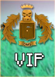 DMS VIP
