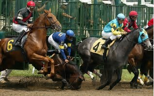 horse_going_down.jpg