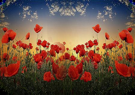 tubes_fleurs_tiram_862