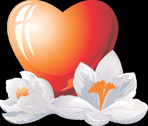 coeur_saint_valentin_tiram_211