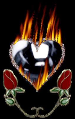 coeur_saint_valentin_tiram_494