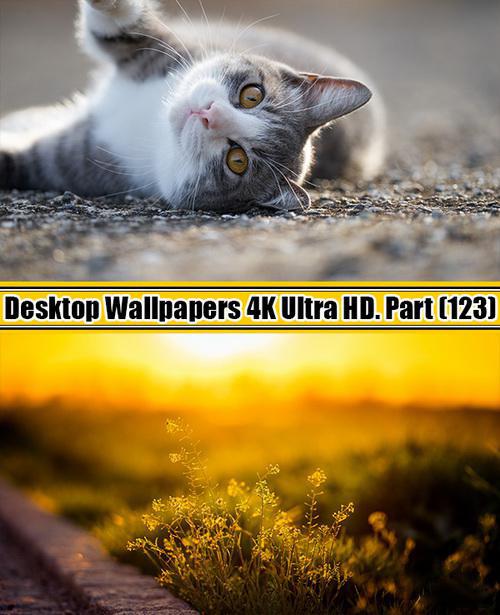 Deskop Wallpapers 4K Ultra HD. Part 123
