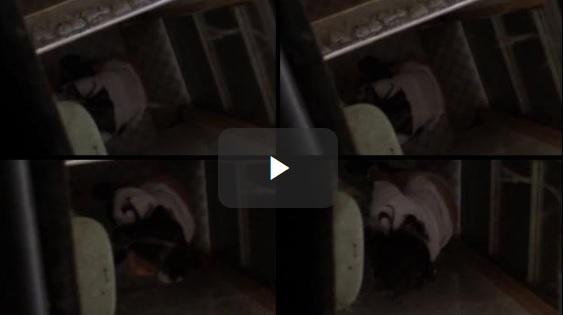 Clip: Quay lén em gái lớp 10 tè xém bị phát hiện!